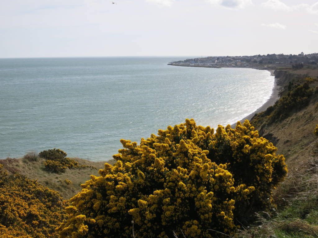 bray cliff walk